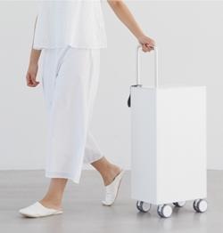 カドーキャリーバッグを持つかのように部屋の中を移動.jpg