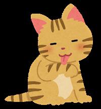 猫が舌で毛づくろい.png