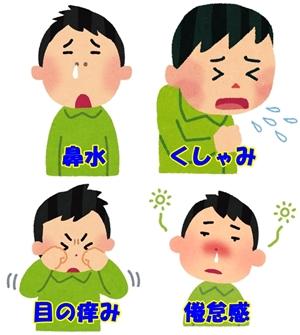 花粉症の辛い症状.jpg